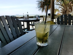 2018 Mojito in Atlantic Beach